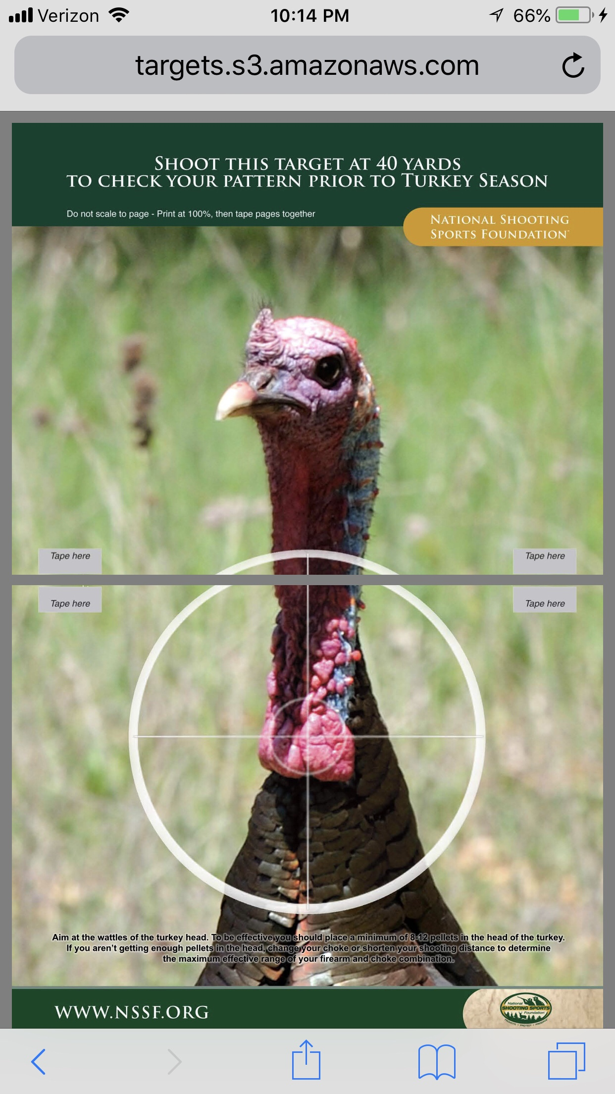 photograph relating to Printable Turkey Head Target named 18.3 Turkey DCap Problem On the net Archery and Bowhunting